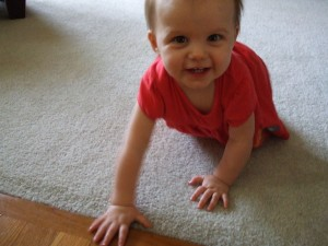 Allie Crawling